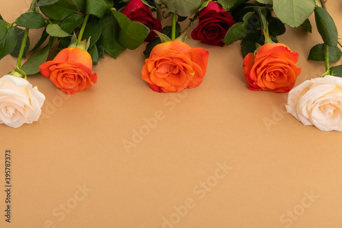 Red, white and orange roses at the top on orange background