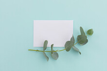 White Envelope With Twig And Leaves Lying On Pale Blue Background