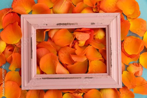 Obraz premium Close up of orange rose petals with red rustic frame on blue background
