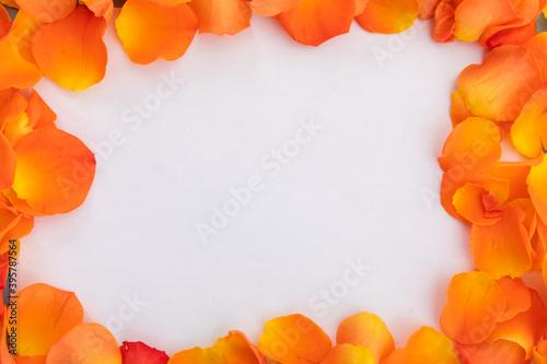 Fototapeta premium Frame of multiple orange rose petals on white background