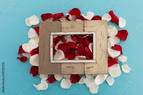 Fototapeta premium Wooden frame over white and red rose petals on blue background