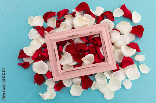 Fototapeta premium White and red rose petals with pink rustic frame on blue background