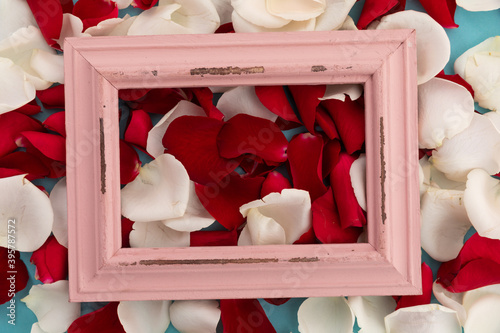 Fototapeta premium Close up of white and red rose petals with pink rustic frame on blue background
