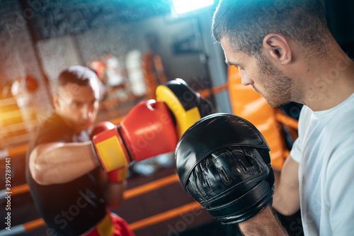 Fotografiet two muscle boxers sport man training and fighting on boxing ring at gym
