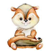 Chipmunk, A Cute Forest Animal...
