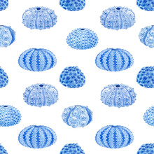 Beautiful Vector Seamless Underwater Pattern With Watercolor Sea Urchin. Stock Illustration.