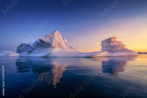 floating glaciers in the rays of the setting sun at polar night with birds Canvas