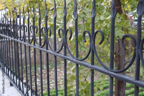 Beautifully inlaid wrought iron fences Fototapet