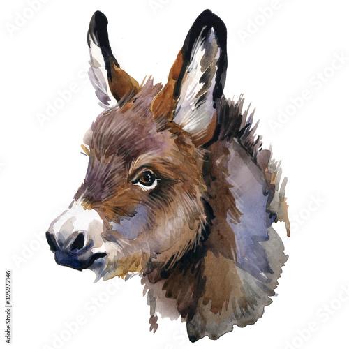 Cuadros en Lienzo Cute donkey watercolor illustration. baby animals series
