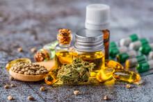 Green Leaves Of Medicinal Cannabis With Extract Oil.Medical Marijuana Flower Buds. Hemp Buds - Medical Marijuana Concept