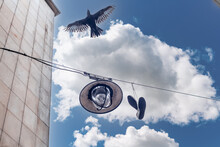 Shoes On A Power Line Wire In The City, A Raven Bird