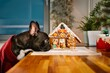 French bulldog looking at gingerbread house in kitchen at home