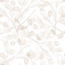 Seamless Dry Lunaria Floral Vector Pattern. Watercolor Winter Wedding Flower Illustration Background
