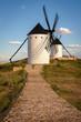 Exterior view of windmills on landscape in spring in Alcazar de San Juan, Ciudad Real, Spain