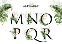 Alphabet Set Of M  N  O  P  Q  R With Tropical Leaves Watercolor And Gold Leaves. For Logo, Initial Name, Branding, Card, Identity, Etc.