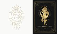 Zodiac Taurus Girl Character Horoscope Sign Line Art Silhouette Design Vector Illustration