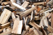 Pile Of Just Chopped Birch Fir...