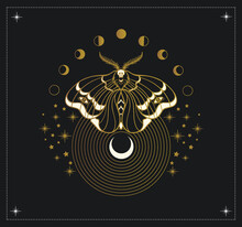 Moth And Cycles Of The Moon, Mystical Symbol