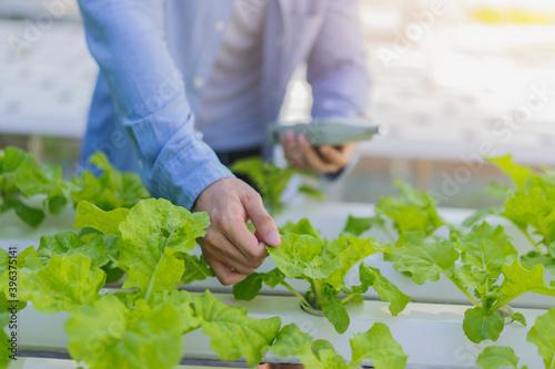 Obraz na płótnie Smart farmer agriculture man using smartphone mobile with smart AI technology se