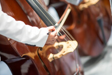 Double Bass Player In Orchestra Performance