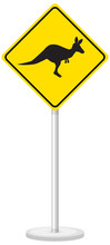 Kangaroo Crossing Sign Isolated On White Background