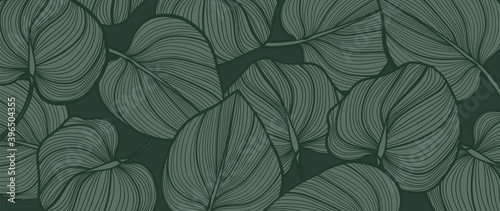 Green Monstera deliciosa leaves background vector. Nature tropical leaf wallpaper.