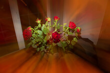 Red Roses Bouquet In A Vase With Zoom Effect