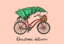 Bicycle With A Christmas Tree. Spruce In The Luggage Of The Bike. Delivery Concept. Vector Illustration For Label, Badge, Logo, Postcard Or Banner. Hand Drawn Vintage Engraved Sketch.
