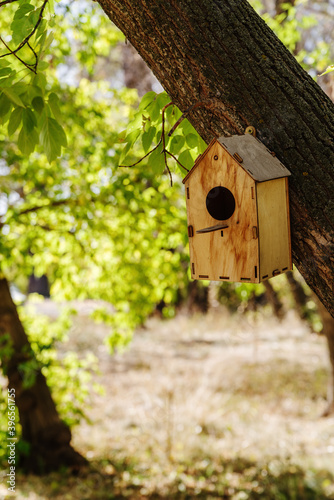 Fotografie, Obraz Wooden birdhouse attached to a tree trunk in a city park