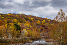 A View Of The Youghiogheny Riv...