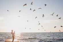 Flock Of Seagulls Over The Sun...