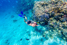 Underwater Shooting Men Snorkeling And Diving In Tropical Sea. Snorkeler Diving Along The Brain Coral