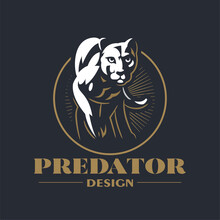 A Puma Or Panther Walks