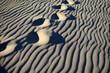 Spectacular dunes in Bolonia beach, Tarifa
