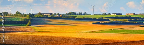 Photo Golden plowed reaped agricultural field, wind turbines in the background