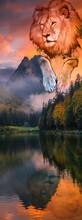 Lion Landscape Mountains Lake Evening