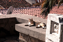 """Security Guard"" Near The Antalya Museum"