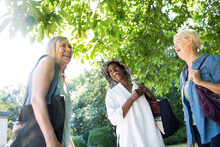 Happy Senior Women Friends Laughing Under Sunny Tree