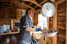 Senior Man Weighing Potatoes With Scale In Garden Shed