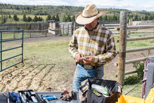 Male Rancher Preparing Cattle Tags At Pasture On Sunny Rural Ranch