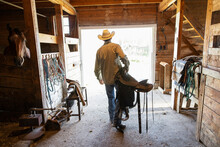 Male Rancher Carrying Horse Saddle In Barn