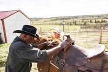Male Farmers Preparing Saddle On Horse On Sunny Rural Farm