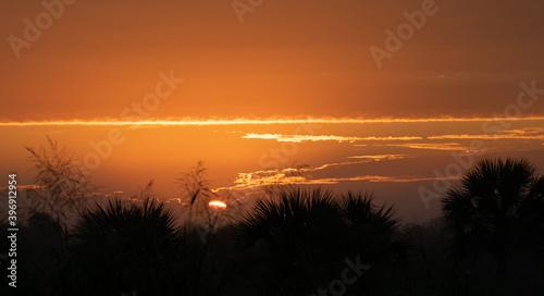 Fototapety, obrazy: sunrise