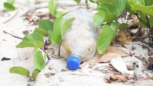 Discarded Plastic Bottle Pollutes Tropical Beach In The South Pacific