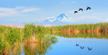 Migratory Birds Fly Over The Lake - Beautiful Landscape And Sultan  Marshes Next To Erciyes Mountain - Kayseri, Turkey