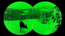 Night Vision Binocular Scope View Deer In Green Snow Mountain Background
