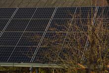 Backyard Solar Panels On An Autumn Evening.