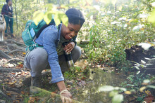 Black Female Botanist Examines Plants On Trail