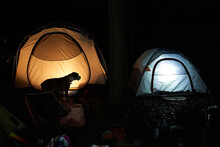 Illuminated Camping Tent In Wo...