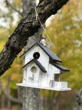 White Bird House Hanging On Tree